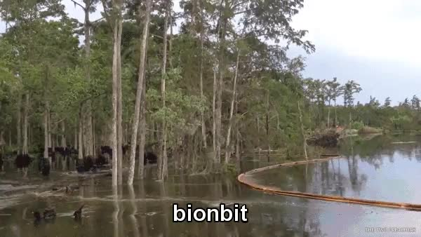 Watch and share Trees Being Swallowed Up By An Underwater Sinkhole GIFs by Nick on Gfycat