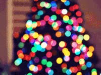Watch and share Christmas Lights GIFs on Gfycat