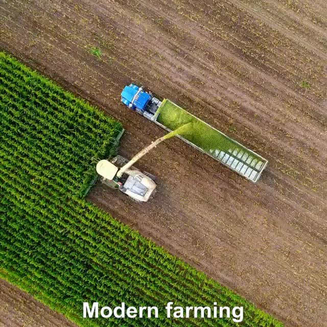 Watch and share Modern Farming GIFs by Mahmoud M. Mahdali on Gfycat