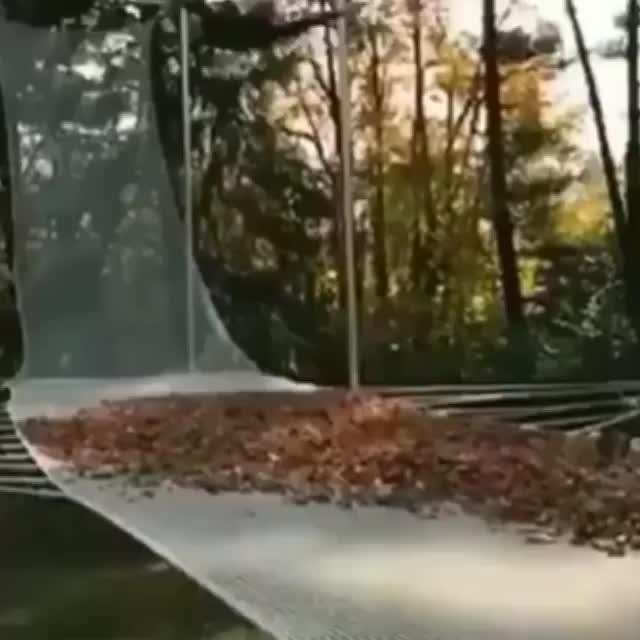 Incredible demonstration of inertia GIFs