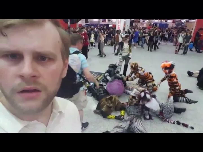 NubOnReddit, Furry Convention GIFs