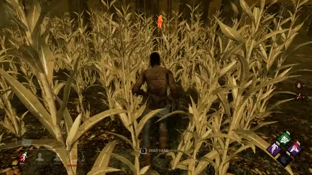 Watch and share Dead By Daylight 2019.11.14 - 22.02.29.04.DVR Trim GIFs on Gfycat