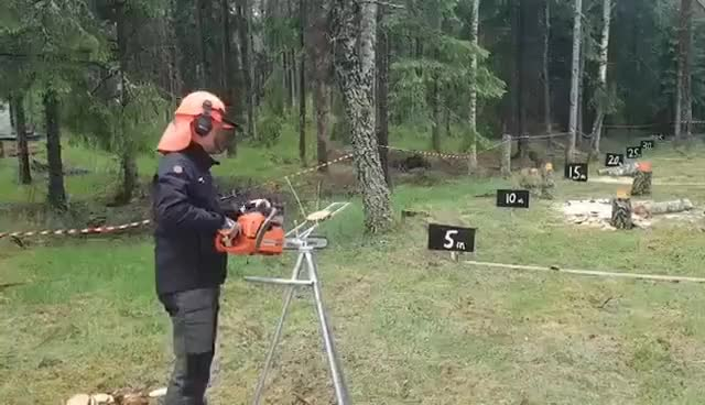 Watch Lumberjack Frisbee! GIF on Gfycat. Discover more related GIFs on Gfycat