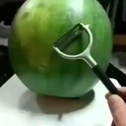 Watermelon carved into a futuristic spaceship GIFs