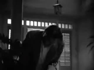 Watch The Letter 1940 Bette Davis opening scene GIF on Gfycat. Discover more related GIFs on Gfycat
