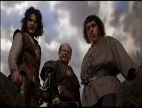 Watch Inconceivable GIF on Gfycat. Discover more Princess Bride GIFs on Gfycat