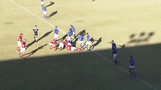 Watch and share Rugbyunion GIFs and Sports GIFs on Gfycat
