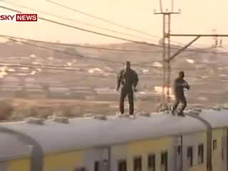 surfing, train, train surfing GIFs