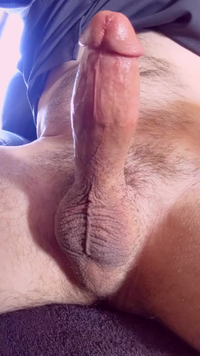 jacking for the livecam makes me drip precum right previous to a thick load.
