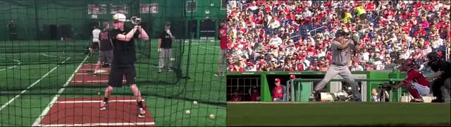 Watch and share Simms-Mauer GIFs by jgelnar on Gfycat