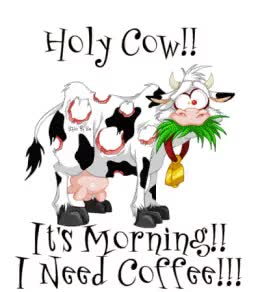Watch and share Holy Cow Its Morning GIFs on Gfycat