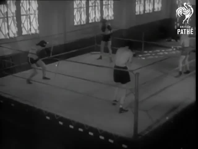 Leon_Kazama0, Boxing blindfolded GIFs