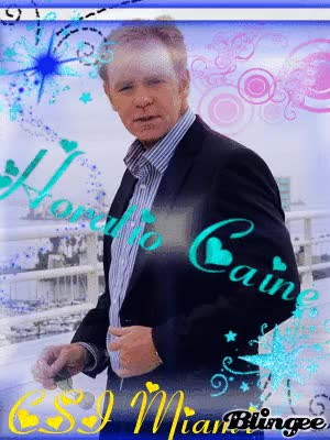 Watch and share Horatio Caine GIFs on Gfycat
