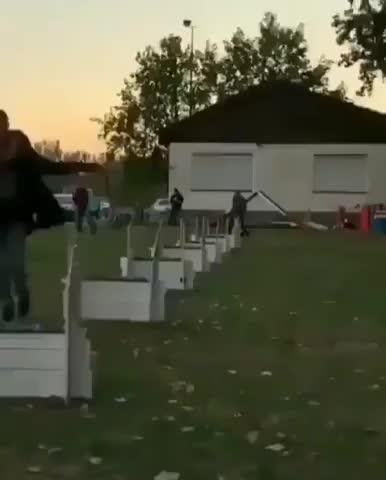 superdog GIFs