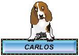 Watch and share Carlos GIFs by Mario Bonu on Gfycat