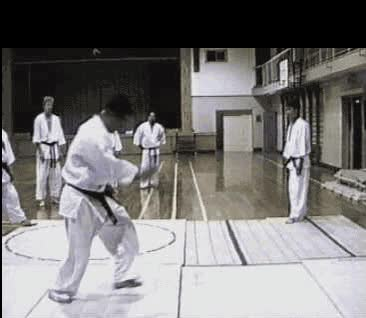 Watch and share Martial Arts GIFs on Gfycat