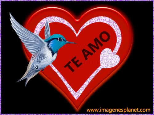 Imagenes De Amor Gifs Search Search Share On Homdor