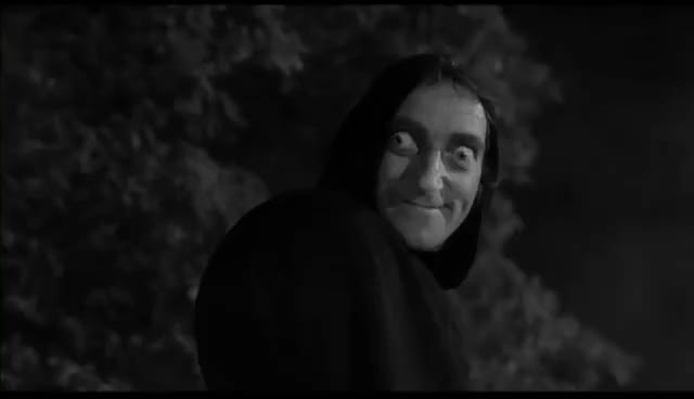 "Watch and share Young Frankenstein — ""What Hump?"" GIFs on Gfycat"