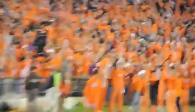 Watch and share Clemson-studentsection GIFs on Gfycat