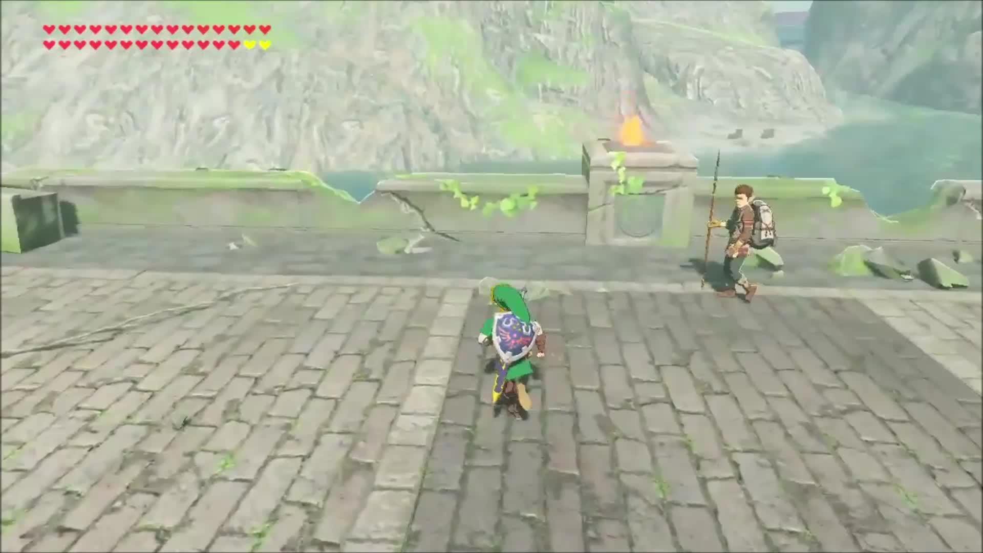 Zelda, Well...he did warn you Link. [BOTW] GIFs