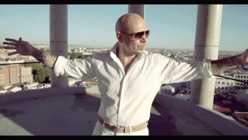 Watch Pitbull rapper GIF on Gfycat. Discover more related GIFs on Gfycat