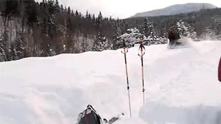 Watch and share A Moose Powering Through The Snow GIFs by Mahmoud M. Mahdali on Gfycat