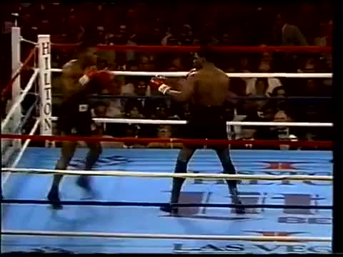Watch www.SugarBoxing.com Mike Tyson cicling while feinting jab GIF by @sugarboxing on Gfycat. Discover more related GIFs on Gfycat