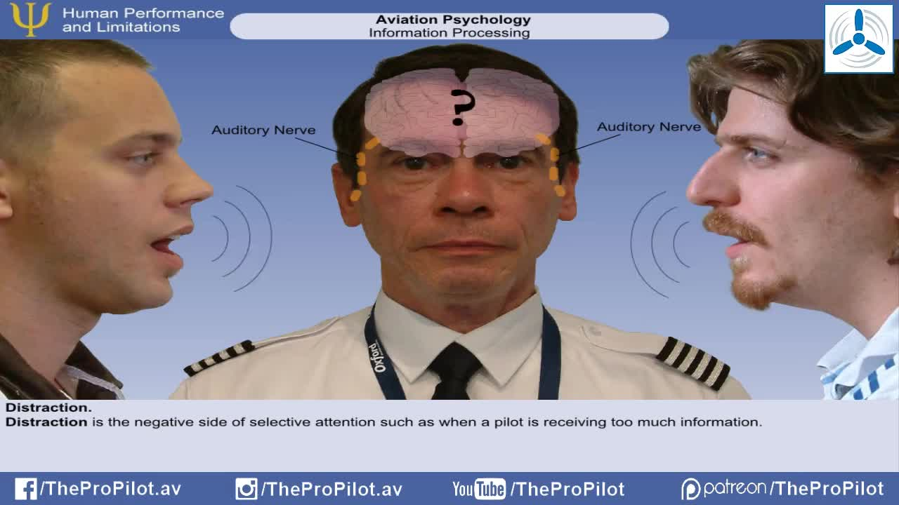 cognition, introduction, HPL Aviation Psychology Lesson 4 - Information Processing GIFs