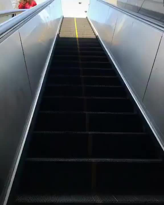 Watch and share The Way This Light Falls On This Escalator GIFs by tothetenthpower on Gfycat