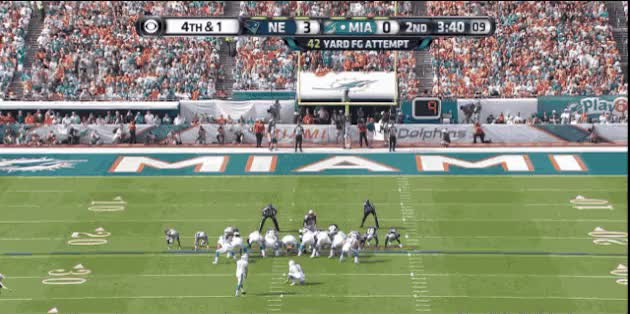 Watch miami dolphins GIF on Gfycat. Discover more related GIFs on Gfycat