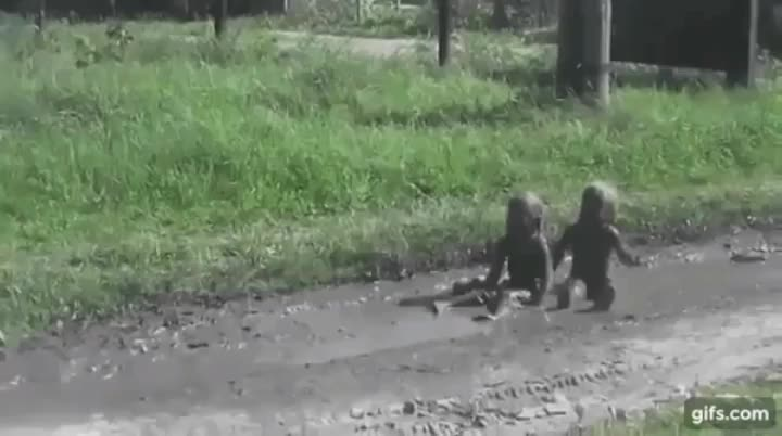Morty_Goldman, HMJB while I play in the mud GIFs