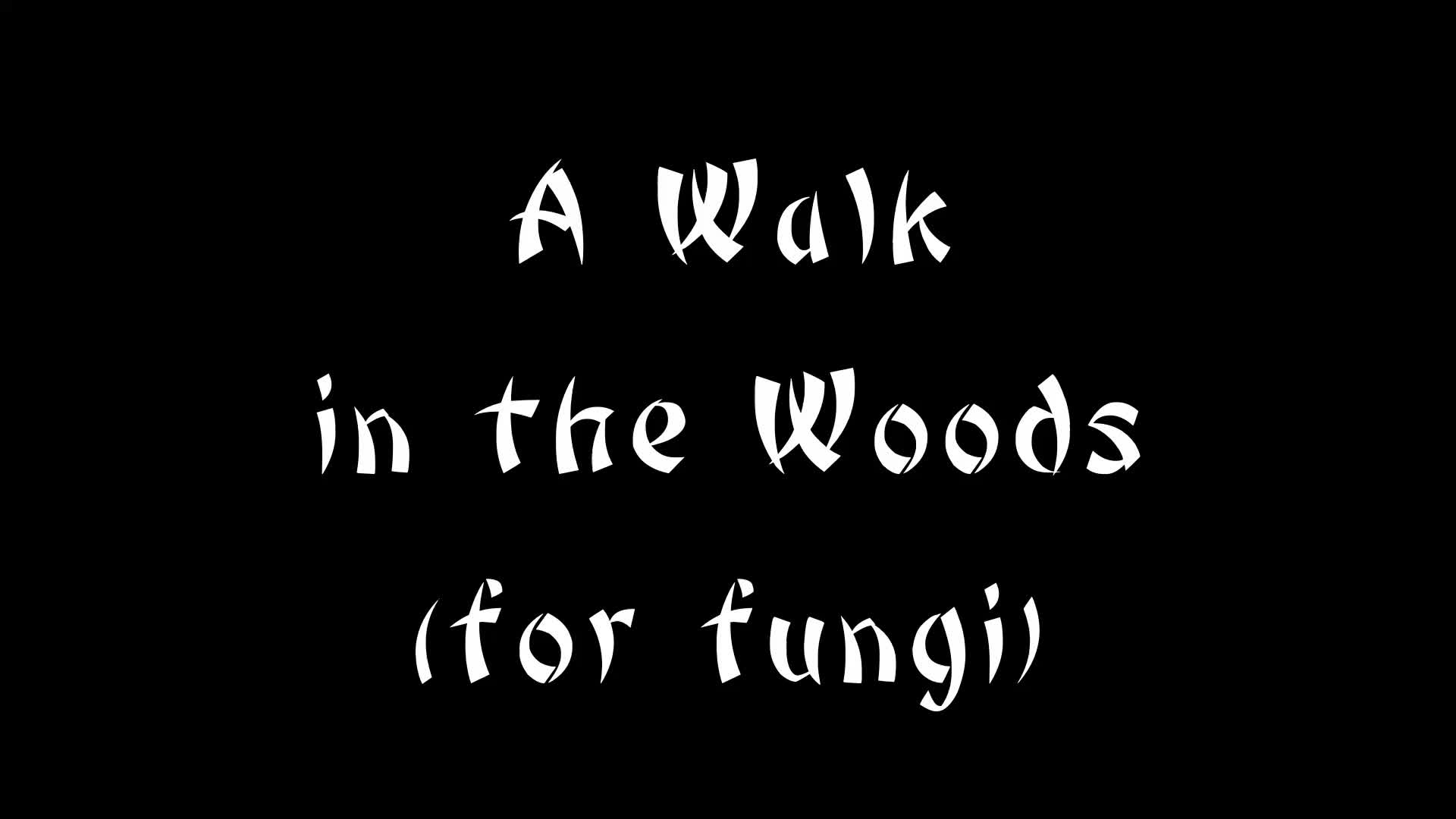 Gitsapalooza, People & Blogs, botany, fungi, micromycotut, mycology, walk, woods, Bushido 54: A Walk in the Woods (Fungus Foray) GIFs