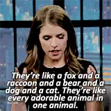 Watch and share Anna Kendrick GIFs and Seth Meyers GIFs on Gfycat