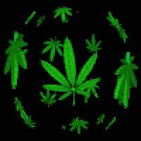WEED GIFs