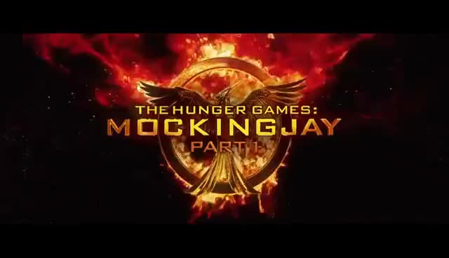 Watch and share Mockingjay GIFs on Gfycat