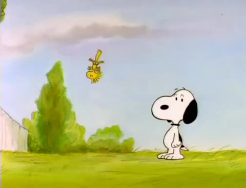 Watch and share Snoopy GIFs on Gfycat