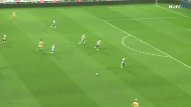 Watch and share Coys GIFs by blubbey on Gfycat