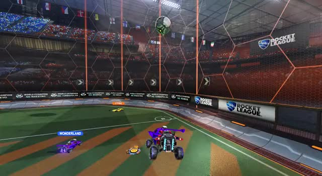 Watch and share Solo Standard... GIFs by piidgey! on Gfycat
