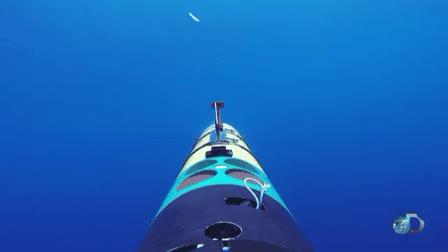 Watch and share Shark Bot GIFs by athertonkd on Gfycat