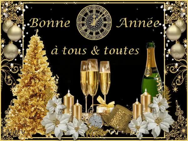 Watch and share Je Vous Présente Tous Mes Meilleurs Voeux De Bonne & Heureuse Année GIFs on Gfycat