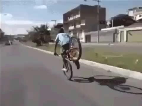 "Watch and share Jerk Gives His ""friend"" Road Rash (reddit) GIFs by markovmaniac on Gfycat"
