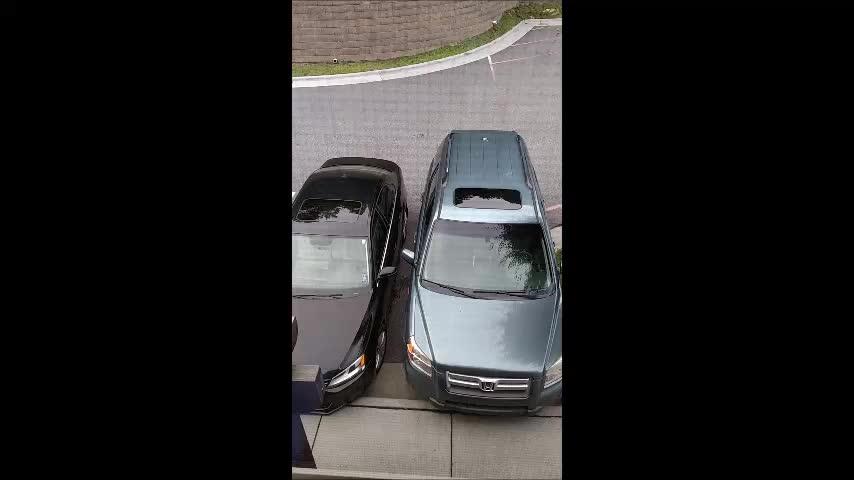 badparking, Awful parking reaction GIFs