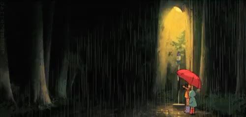Watch and share Ghibli Totoro GIFs on Gfycat