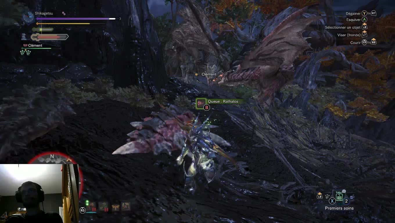 monster hunter rathalos rathian, monster hunter world, rathalos, rathian, GIF rath couple 1 GIFs