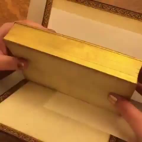 Book has a picture hidden in the gilded edges of its pages GIFs