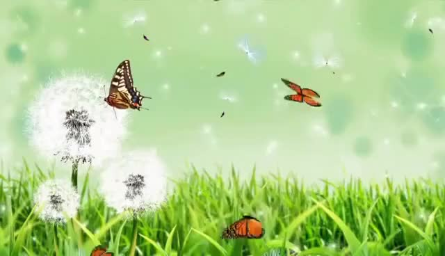 Watch and share Video Background HD || Nature Background 2 GIFs on Gfycat