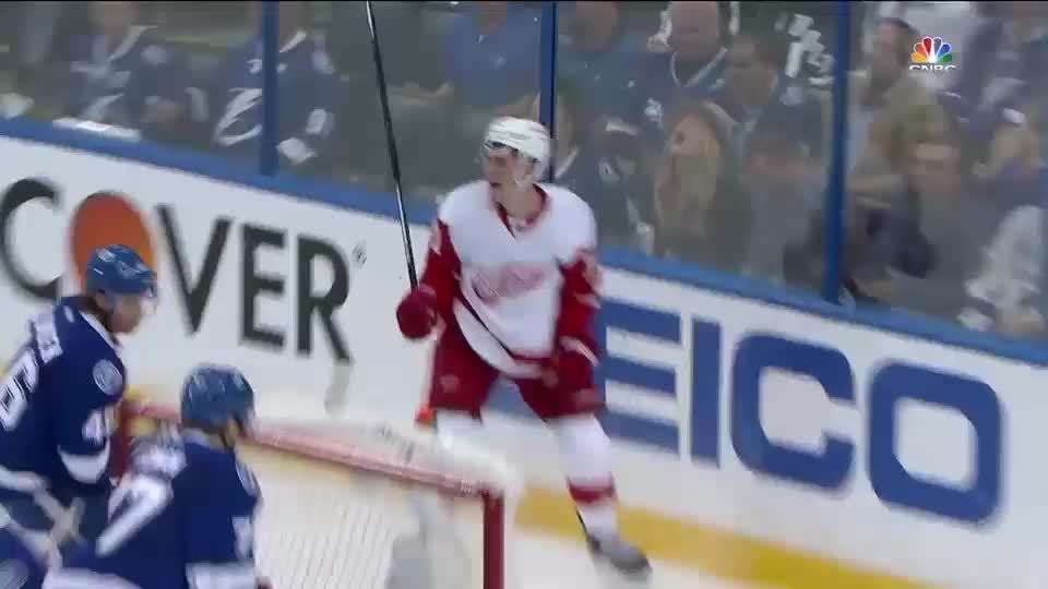 SuperSaiyanGifs, detroitredwings, supersaiyangifs, Larkin Rage Celly GIFs