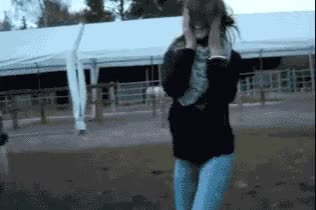 Watch Oddly Satisfying GIF on Gfycat. Discover more related GIFs on Gfycat