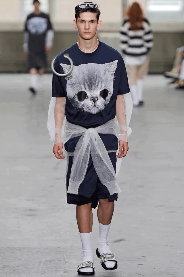 Watch and share Cat Clothing GIFs on Gfycat