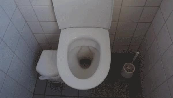 Watch and share Toilet GIFs by anhmjn on Gfycat